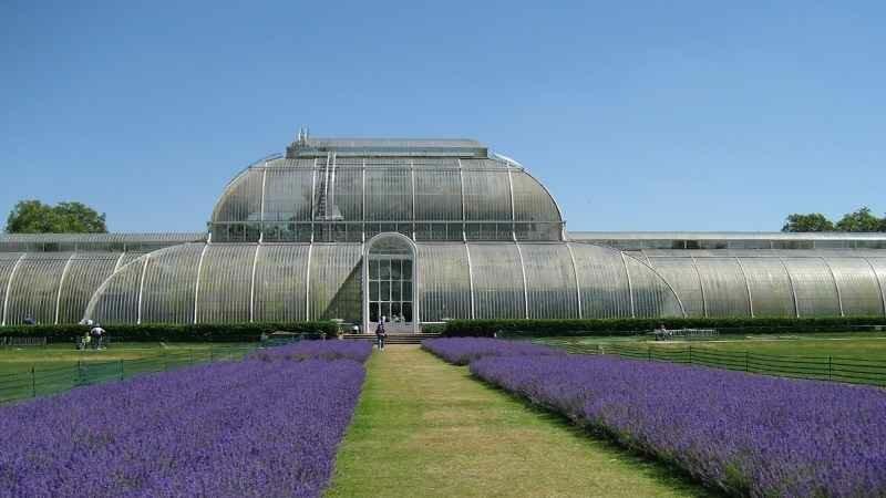 Ботанические сады Англии