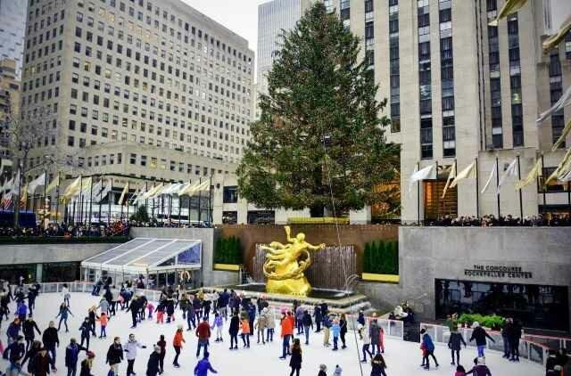 Рождество в Нью-Йорке украсит норвежская ель