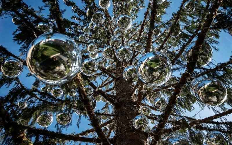Рождественская елка в Риме стоимостью 50 000 долларов лысая