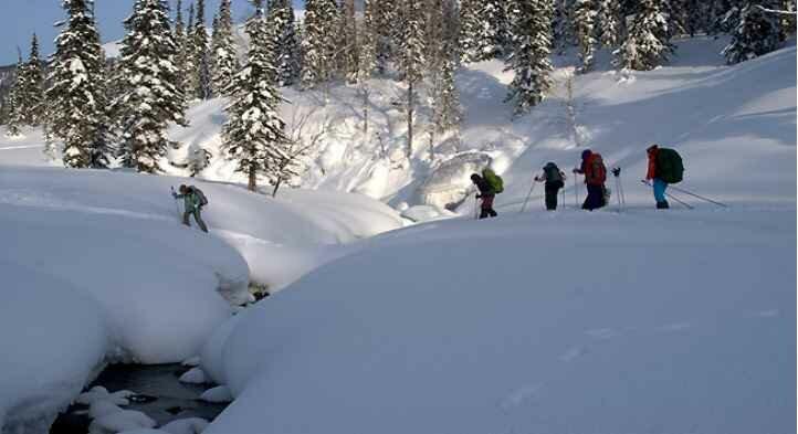 Зимнее путешествие по тайге на лыжах