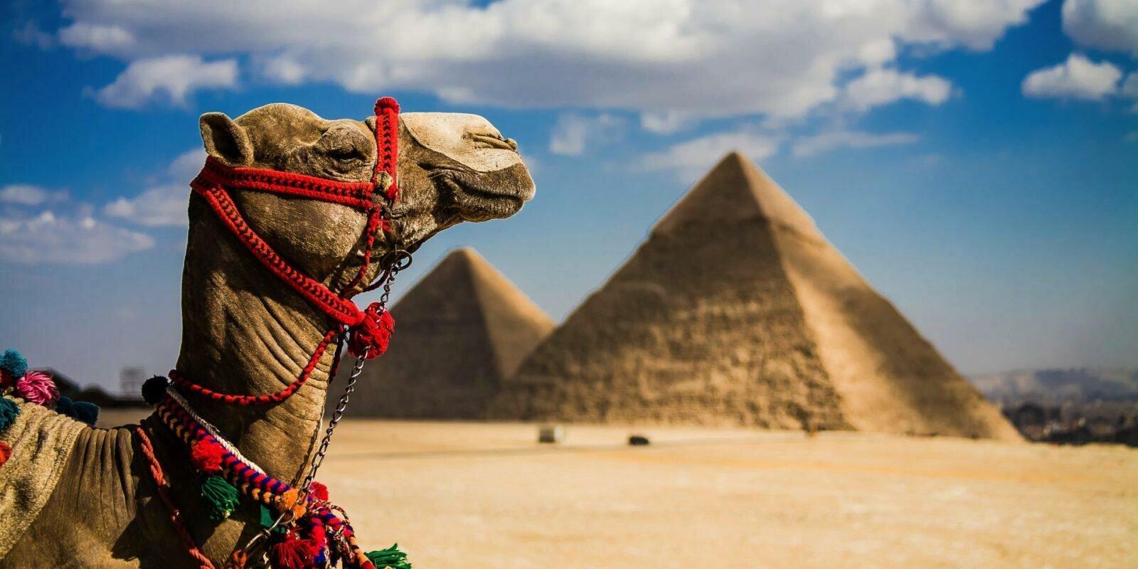 Египет 2019 станет популярным направлением