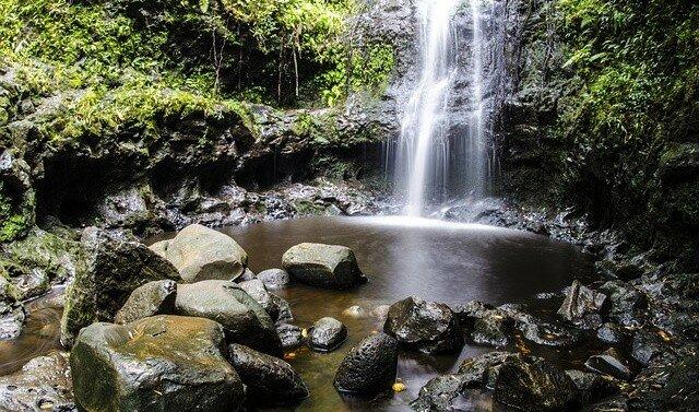 Самая эффективная природная терапия в Оаху на Гавайях 33