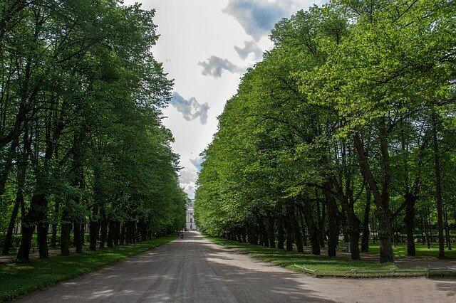 Приморский парк Победы в Санкт-Петербурге