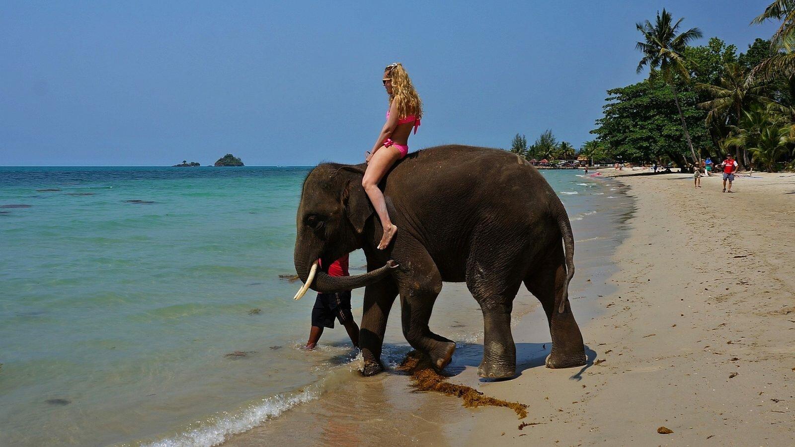 Таиланд страна для путешествий и отдыха